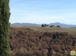 Valle D'Orcia_14