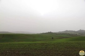 Valle D'Orcia_17