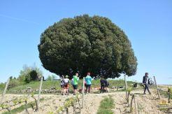 bike-tour-toscana_15
