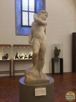 Davi-Apolo