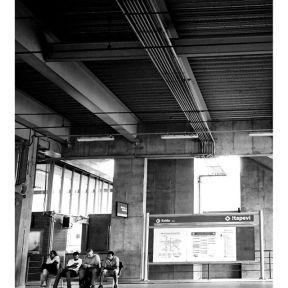 Patient wait... Espera paciente... by Paulo Wang achadosdasemana, all_bnwshots, amigersbr, bnw_universe, brbw, brstreet, bwstylesgf, capturestreet, click_vision, fotomissao, ic_streetlife, ig_saopaulo, ig_street, instadozamigos, jornalistasdeimagens, mafia_streetlove, mobgraphia, mono_street, new_chiquesnourtemo, passengers, pix_mania, rsa_streetview, shootermag_brasil, spdagaroa, streetbwcolor, streetphoto_brasil, super_saopaulo, vejocotidiano, vejo_sp,