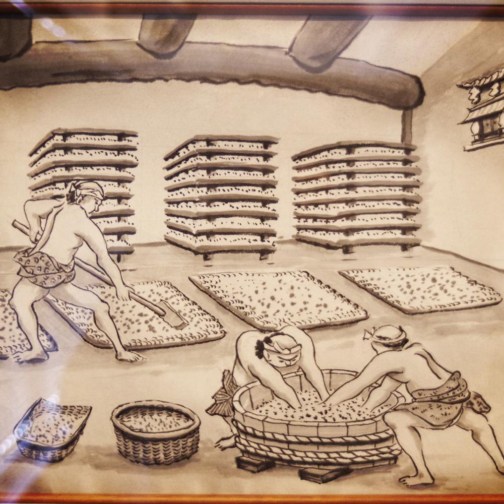 dessin production de sauce soja