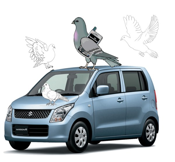 The Pigeonthropist on my WagonR