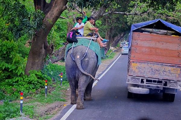 #TheRoyalReuvenation Journey to Namah Resorts. Journeys are about expectations...