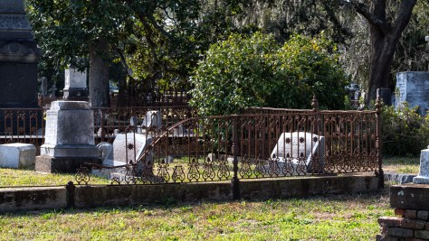 Lyre and Star Fence