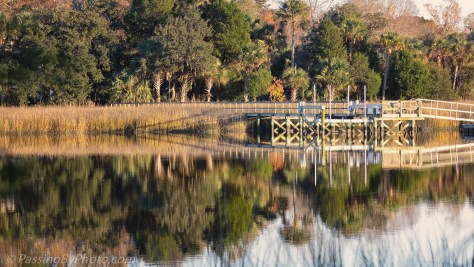 Dock on the Ashley River