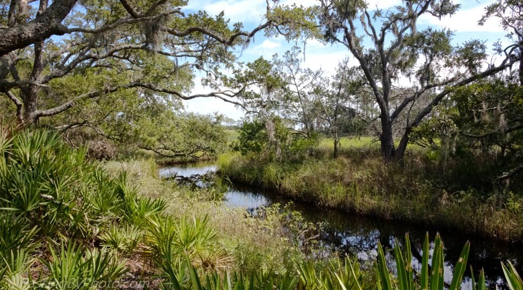 Fresh Water on St Phillips Island