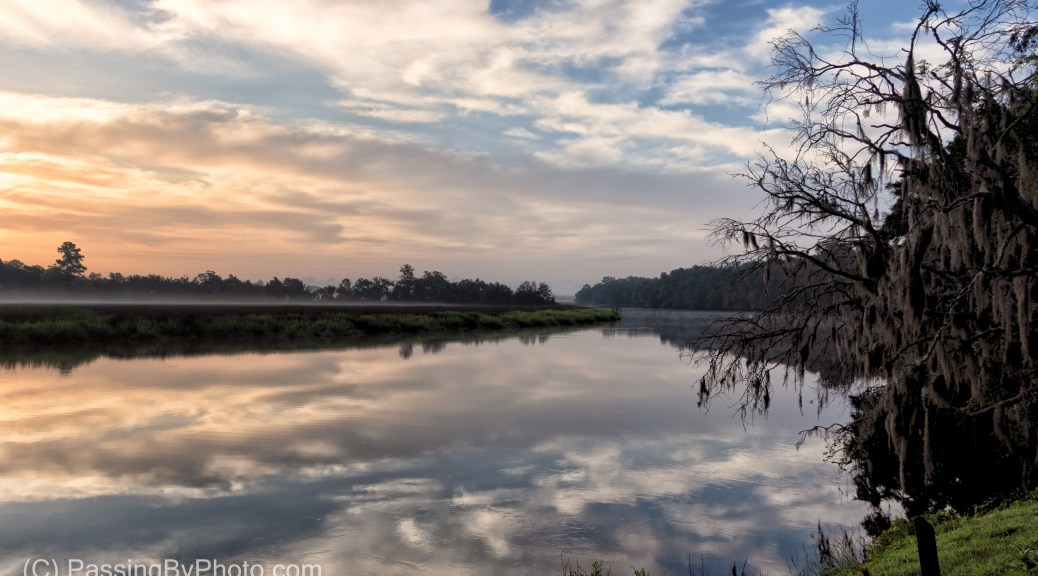 Morning Fog on the Ashely River at Magnolia Plantation