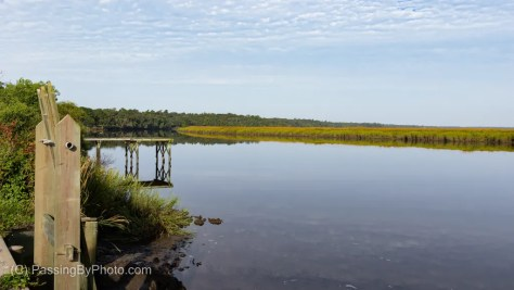 Ashely River at Magnolia Plantation