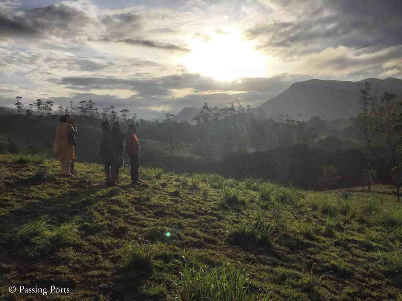 Mount Sathram Thekkady