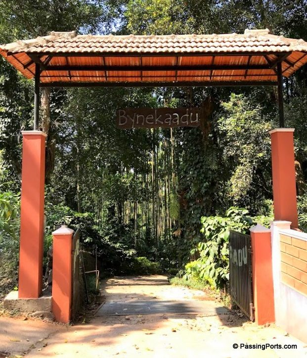 Homestay in Chikmangalur