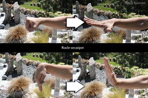 échauffement muscler poignet