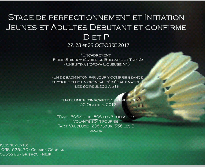 stage badminton perfectionnement initiation