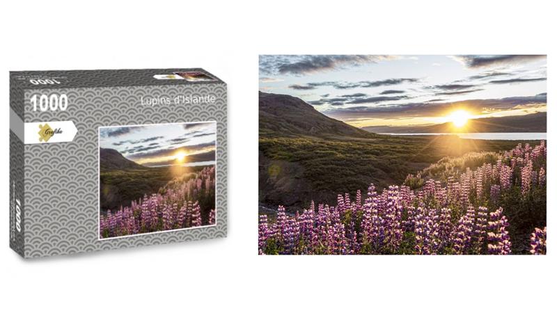 Lupins d'Islande, puzzle 1000 pièces, par Jean-Yves Petit