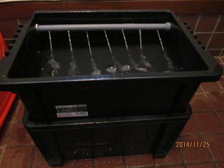 水耕栽培装置試運転