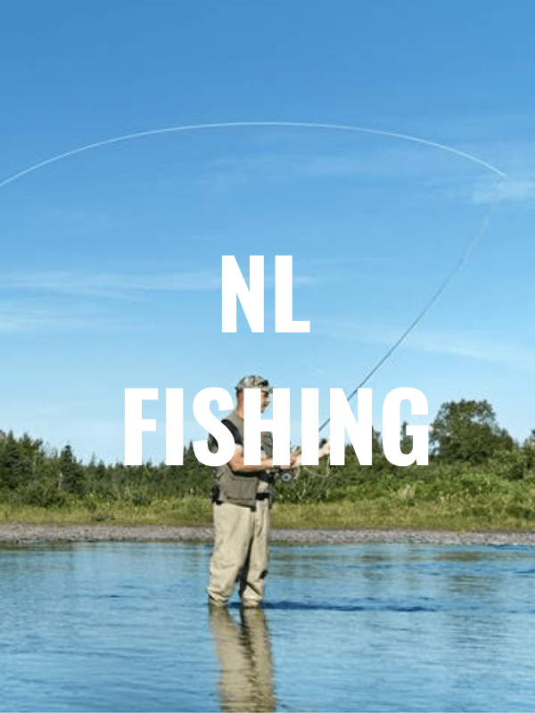 NL fishing graphic