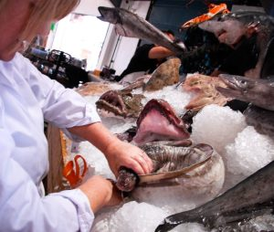Sue Lucas arranging the Passionate about Fish display at Newlyn Fish Festival in support of Fishermen's Mission