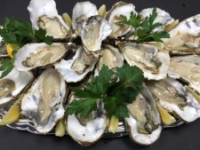 oysters-open