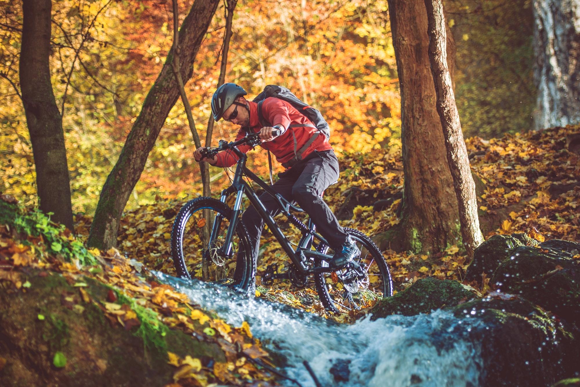 Active Mountain Biker