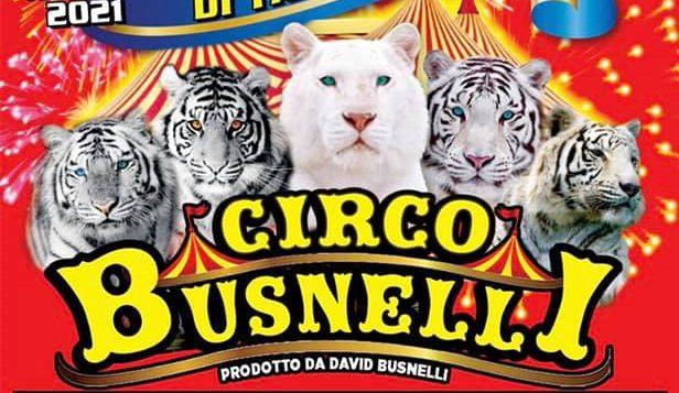 Circo Busnelli Lido di Dante e Cesenatico