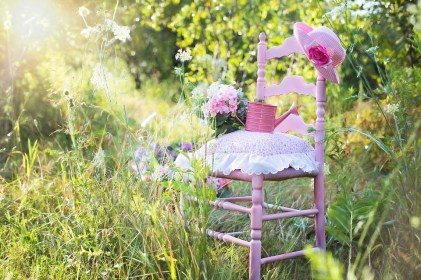 Sedia Rosa Estate Natura Outdoor Stile Di Vita