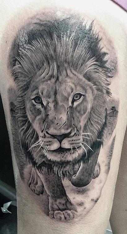Tatuaggio Leone significato simbologia e galleria di immagini  PassioneTattoo