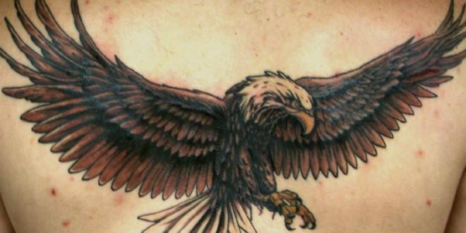 Tatuaggio Aquila disegni e significati  PassioneTattoo