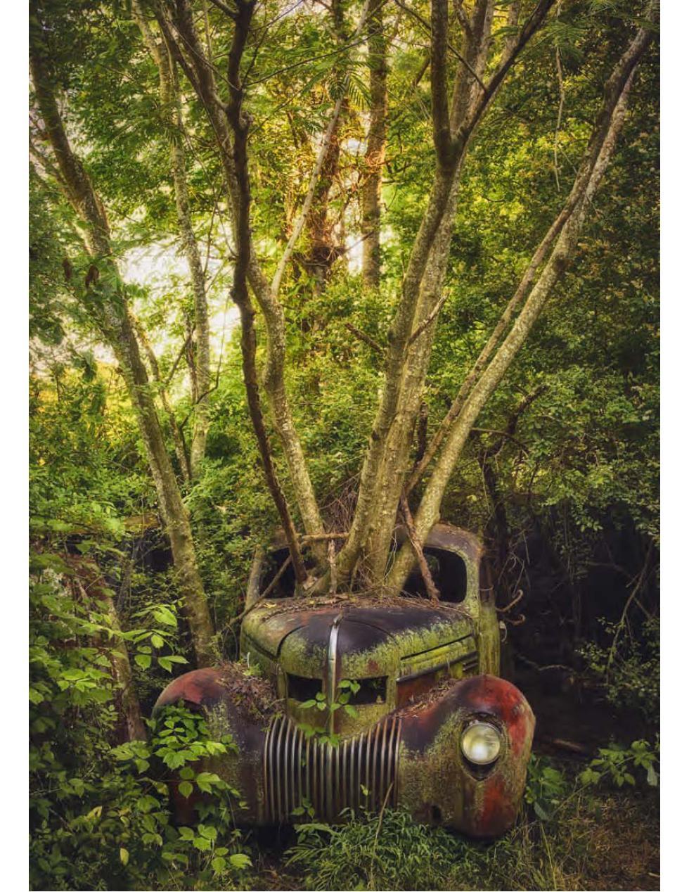 Lost Cars