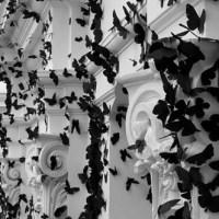 Andrea Mastrovito's paper butterflies for Dior