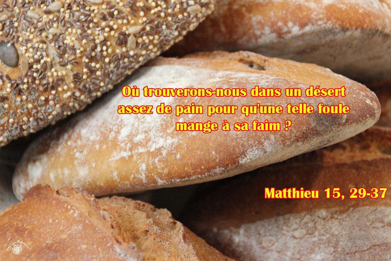 Matthieu 15 29 37aw