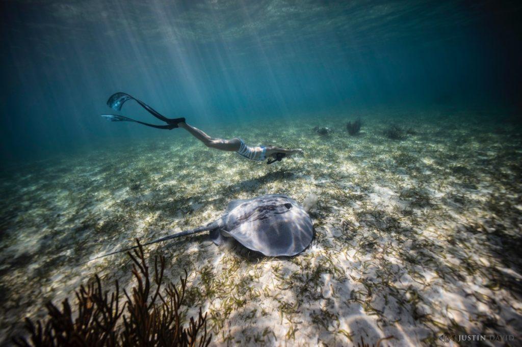 Valentine Thomas nageant avec une raie par Justin Baluch