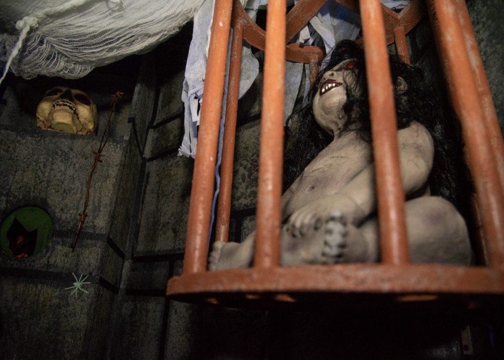 Foire de l'horreur cage