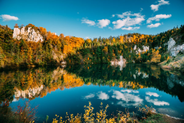 A lake in a national park during autumn