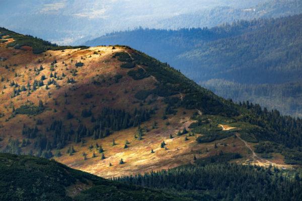 The rolling hills of Babia Gora, Poland