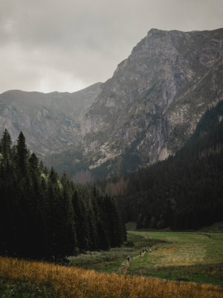 Forests and fields before mountains in the Tatra National Park, Poland