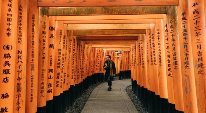 creative man walks under torii gates