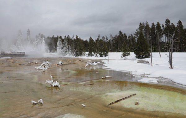 a geyser in yellowstone during winter