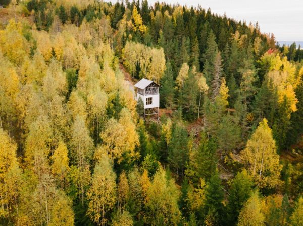 aerial view of cabin in woods