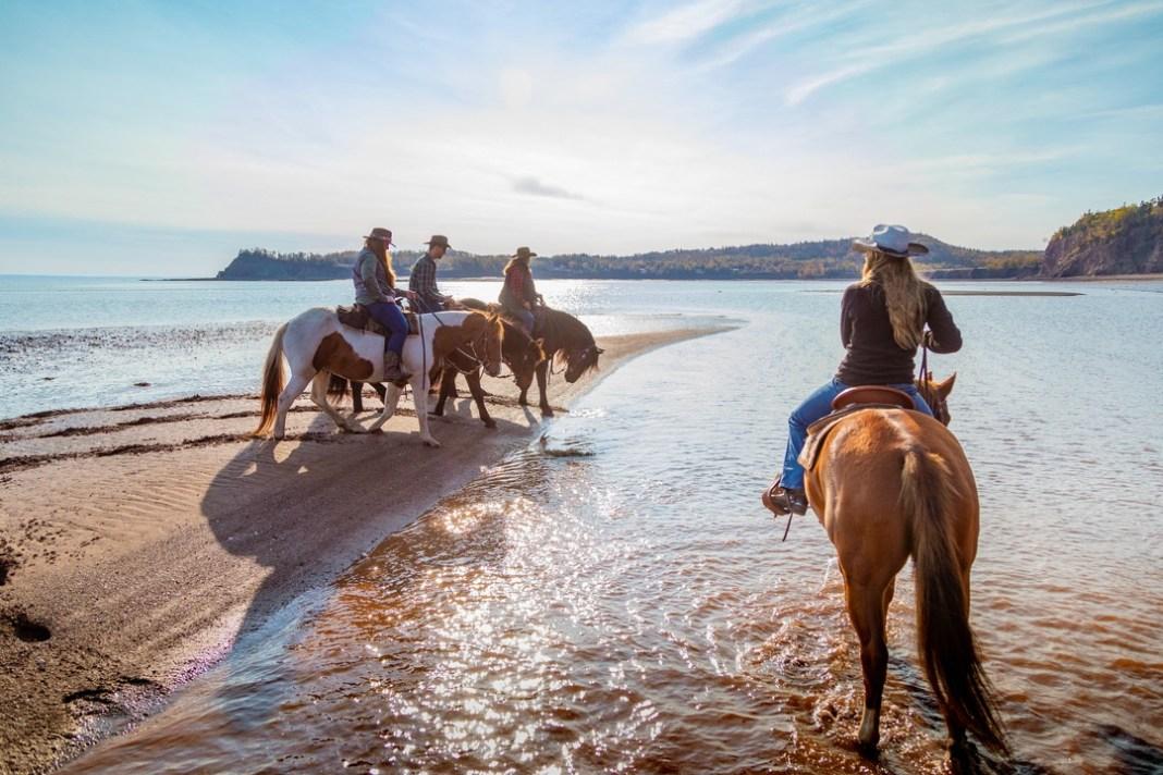 horseback riding ocean floor