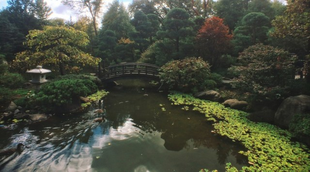Passion-Passport-Rockford-lllinois-Anderson-Japanese-Gardens