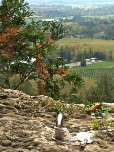 rock-climbing-escarpment