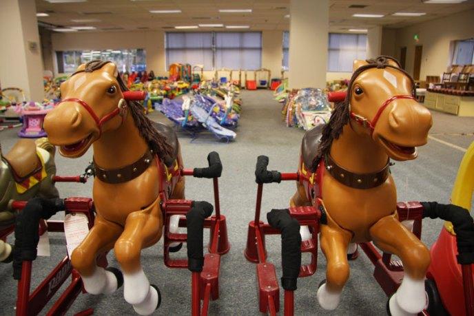 horses-bouncy