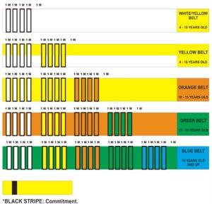 jiu jitsu diagrams | passmyguard