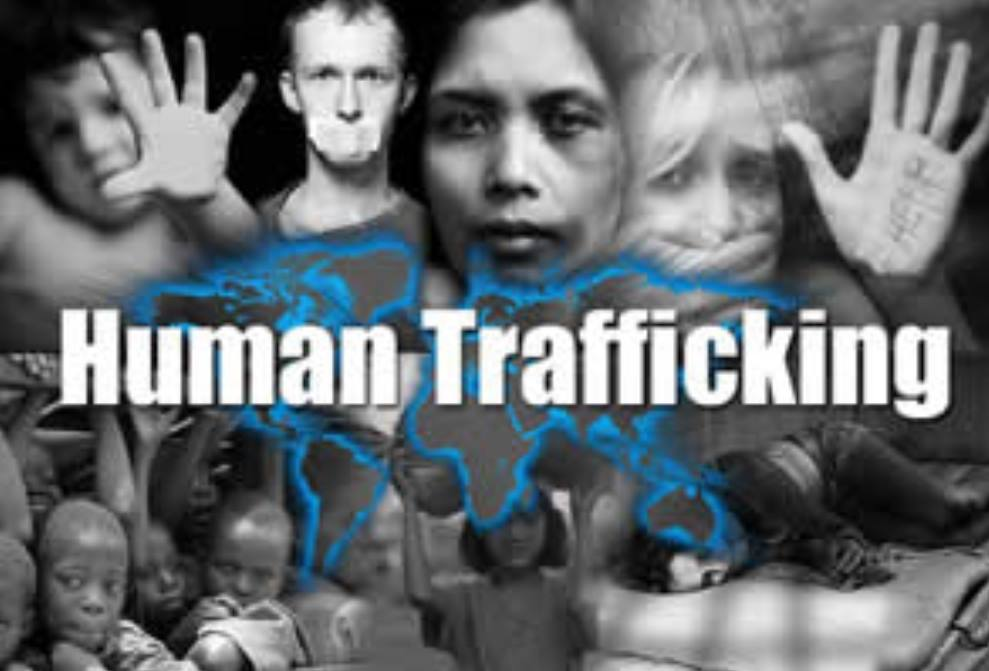 significance of study of human trafficking 1 a study of relationships between socioeconomic indicators and rates of human trafficking victimization in europe and central asia by ivan grishchenko.