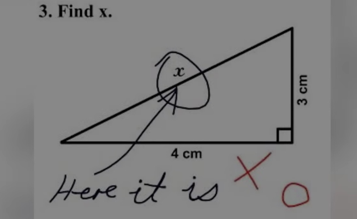 17 Very Funny Answers to Exam Questions That Students Have