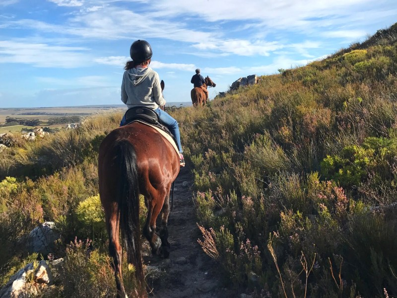 Horseback ride in South Africa