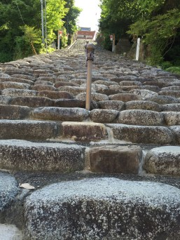 Up these stairs is a women-only hot-spring. Well, either that or a Shinto shrine.
