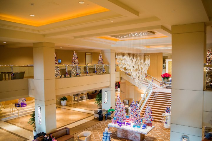 Hilton Hotel Los Angeles Airport - A 15-Day California Road-Trip Itinerary