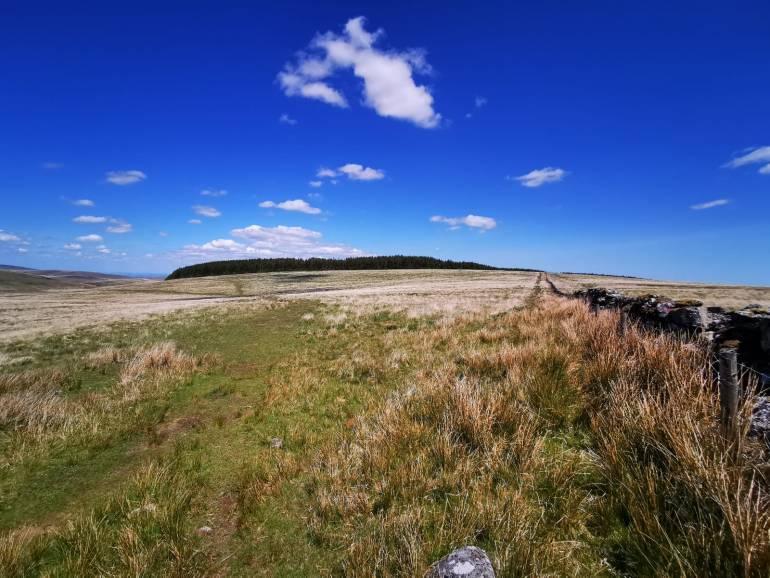 Dartmoor Hiking Trails: Postbridge to Fernworthy Reservoir