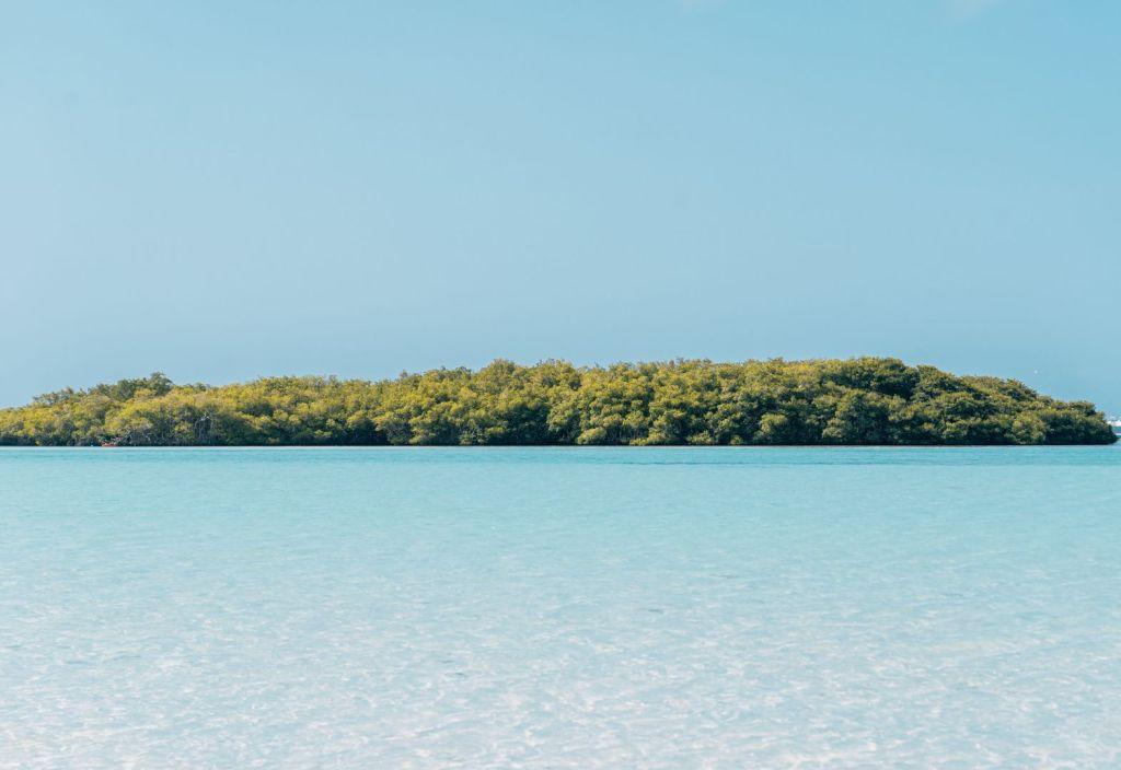 playa rincón república dominicana
